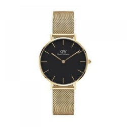 daniel wellington petite evergold 32mm watch DW00100347